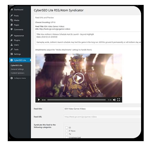 Пример использования плагина CyberSyn для WordPress